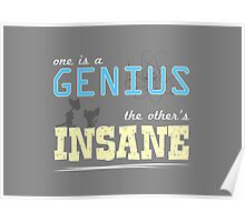 One is a Genius... The Other's Insane! Poster