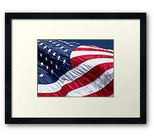 The Red, White, and Blue Framed Print