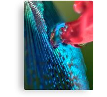 Wellspring of Knowledge Canvas Print
