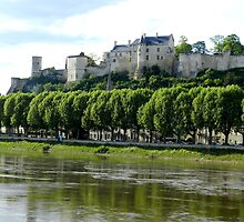 Chateau de Chinon by hans p olsen