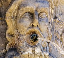 Head of the Fountain by Mike Church