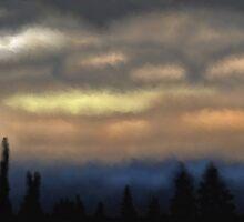 Dusky forest sky by JillySB