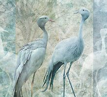 Two Blue Cranes by Cora Niele