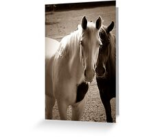 Two Horses in Sepia  Greeting Card