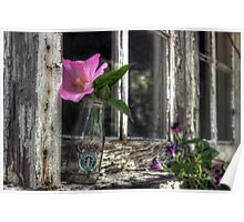 Starbuck with Wildflowers Poster