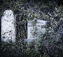 Hidden Grave Stones In Cemetery by MissDawnM