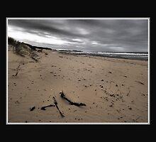 The Dull Seaside by Warren. A. Williams