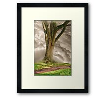 Finding Solitude Framed Print