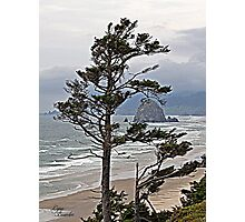 """Oregon Coastline"" Photographic Print"