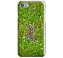 Mr Rabbit Case iPhone Case/Skin