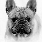 French Bulldog by Danguole Serstinskaja