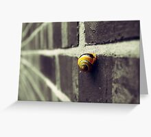 Snail On A Wall Greeting Card