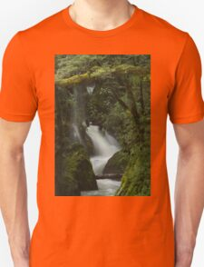 Secrets of the Forest _ New Zealand T-Shirt