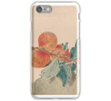 Attributed to Aert Schouman 1710-1792 Apricots and Plums iPhone Case/Skin
