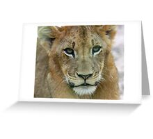 Sparta Pride Cub Greeting Card