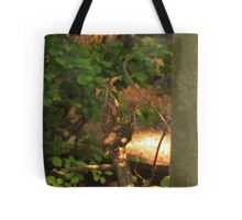 Baby Wild Turkeys Tote Bag