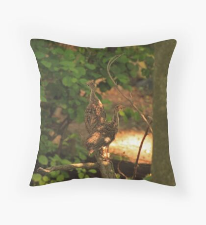 Baby Wild Turkeys Throw Pillow