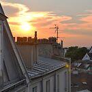 Rooftops at dusk - Paris, France by CongressTart