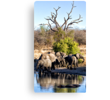 The Meeting Place Canvas Print