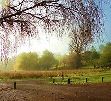 Winter - Helen Hulme by Golden Valley Tree Park
