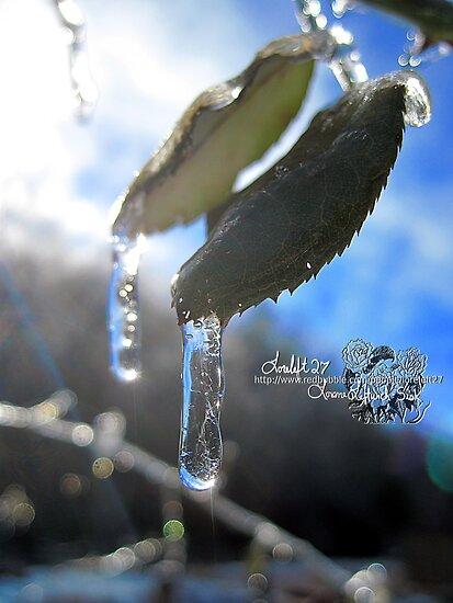 frozen in time  by LoreLeft27
