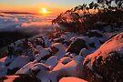 Mount Torbreck .1516 metres by Donovan Wilson