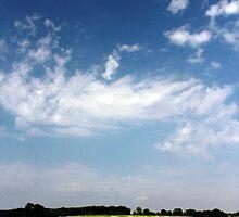 In my Somerset by davrberts