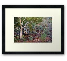 King's Canyon NT - Base Framed Print