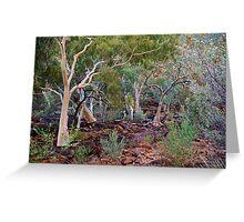 King's Canyon NT - Base Greeting Card