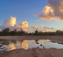 Puddle Of Water by CollinScott