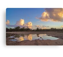 Puddle Of Water Canvas Print