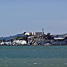 """The Rock""  -  Alcatraz Island by Gail Jones"