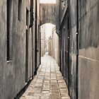 Endless Alley by DCarlier