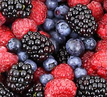 Blackberry, Raspberry, Blueberry, Grapes - Red, Blue by sitnica