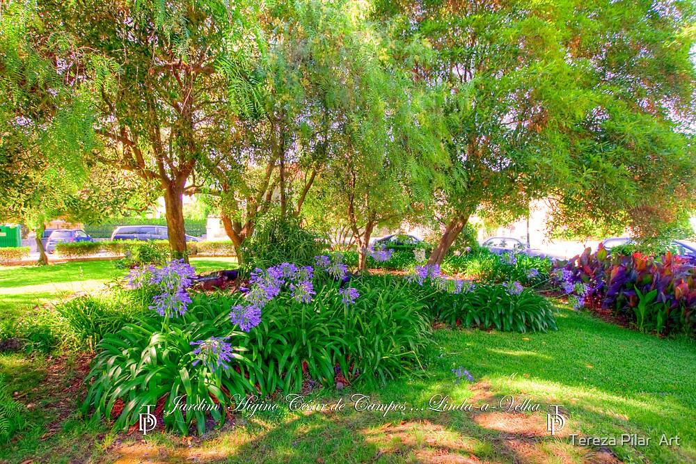 Jardim  Higino César de Campos. Garden. by terezadelpilar ~ art & architecture