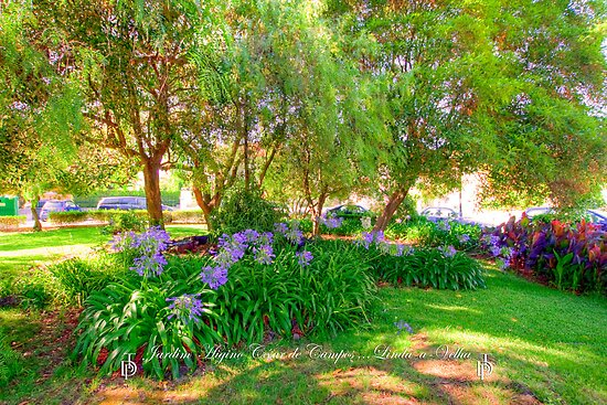 Jardim  Higino César de Campos. Garden. by terezadelpilar~ art & architecture