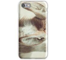 Equine Donkey Ears iPhone Case/Skin