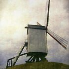 belgium windmill by dale54