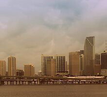 Downtown Miami by NathanGordon