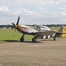 North American P-51D Mustang by Edward Denyer