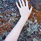 lichen doll by helveticaneue