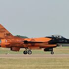The Orange Lion of The Netherlands by Barrie Woodward