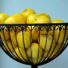 When Life Gives You Lemons......... by phil decocco