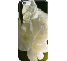 White Rose After the Rain iPhone Case/Skin