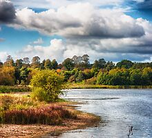 View Across the Reservoir by Vicki Field