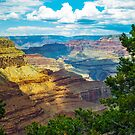 The Grand Canyon through the pines. by philw