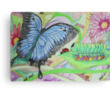 From Caterpillar to Butterfly Canvas Print