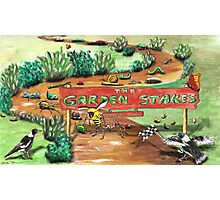 The Garden Stakes Photographic Print