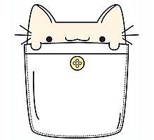 Pocket Cat Photographic Print