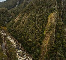 Leven Canyon from Edge Lookout viewing South by fotosic
